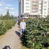 Дмитрий, 43, г.Пакруоис