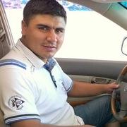 Ватсон 34 Ташкент
