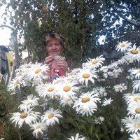 Валентина, 63 года, Стрелец, Сафоново