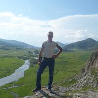 Николай, 48 лет, Стрелец, Новосибирск