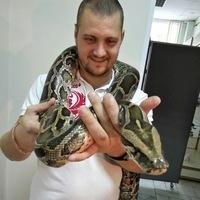 Илья, 33 года, Стрелец, Иркутск