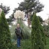 Валерий, 63, г.Железногорск