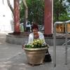 Нина, 65, г.Ялта