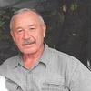 Владимир, 64, г.Чита