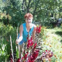 Любовь, 59 лет, Дева, Рязань