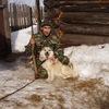 Виктор, 55, г.Пермь