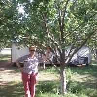 Izabella, 75 лет, Водолей, Ереван