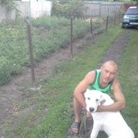 Сергей, 39 лет, Весы, Белгород