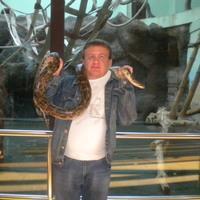 Анатолий, 44 года, Рак, Ижевск
