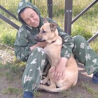 Лариса, 61 год, Дева, Зеленоград