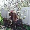 Андрей Юрташкин, 58, г.Ахтырский