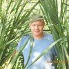 Dmitriy, 42, Kirzhach