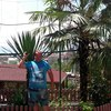 Evgeniy, 44, Highest Mountain