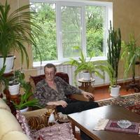 andrey, 53 года, Скорпион, Михайловск