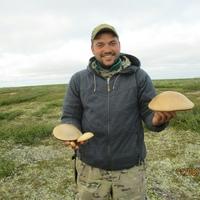 Денис, 34 года, Водолей, Тамбов