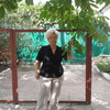 Эльвира, 67, г.Ворошиловград