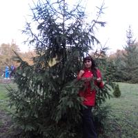 Екатерина, 34 года, Скорпион, Донецк
