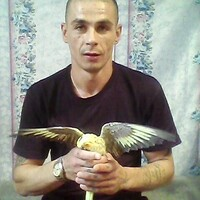 Дима, 41 год, Рак, Томск