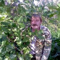 Игорь, 51 год, Рак, Псков