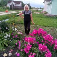 галина, 72 года, Козерог, Санкт-Петербург