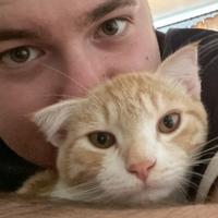 Кирилл, 24 года, Скорпион, Томск
