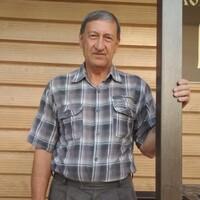 Александр, 66 лет, Рак, Димитровград