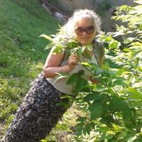 Оля, 30 лет, Телец, Брянск