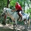 Николай, 42, г.Первоуральск