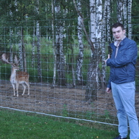 Тима, 29 лет, Овен, Москва