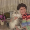 Светлана, 53, г.Сандерленд