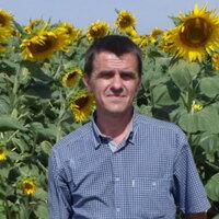 Алексей, 31 год, Рыбы, Волгоград