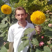 Вова, 45 лет, Козерог, Бахчисарай