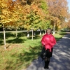 Елена, 47, г.Ростов-на-Дону