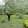 Светлана, 58, г.Володарск