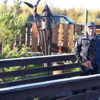 Влад, 43 года, Козерог, Няндома