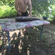 Алексей 48 Ростов-на-Дону