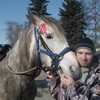 Aleksandr, 40, Bronnitsy