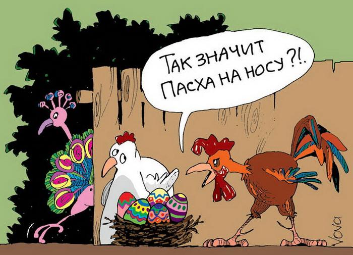 Анекдоты Петух