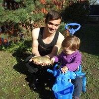 Александр, 33 года, Стрелец, Ялта