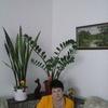 ГАЛИНА, 61, г.Снежинск