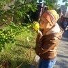 Світлана, 44, Тернопіль