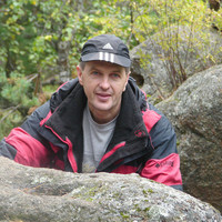 Владимир, 40 лет, Лев, Красноярск