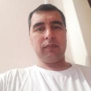 Бахром 37 Холмогоры