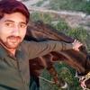 Saif, 24, Islamabad