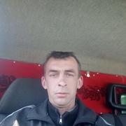 Владимир 30 Нежин
