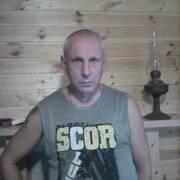лев 52 Ярославль