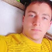 Михаил 29 Фалешты