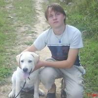 Макс, 27 лет, Близнецы, Нижний Новгород