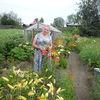 Лариса, 64, г.Кушва