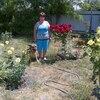 нина георгиевна, 65, г.Краснодар